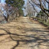 冬のパノラマ「よこやまの道」を歩く