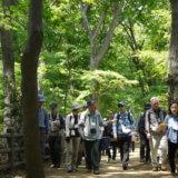 第11回多摩めぐり~多摩を深める <br> 緑陰の玉川上水緑道を歩く 上水分水と武蔵野の新田開発