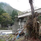「紅葉の御岳渓谷自然観察会」中止 <br>  台風19号、吊り橋流し、遊歩道寸断