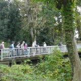 第16回多摩めぐり~多摩を深める 玉川上水緑道歩きラスト <br> 太宰の三鷹を経て高井戸浅間橋まで、更に四谷大木戸へ至る